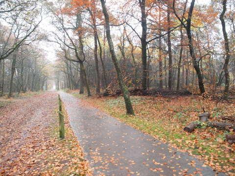 deel van de route foto